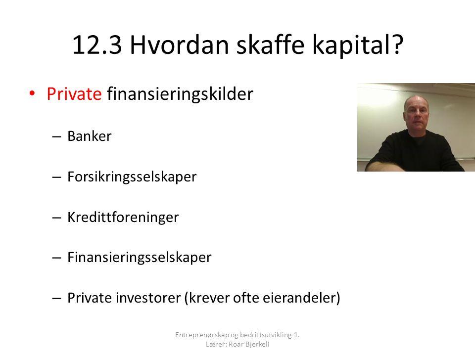 12.3 Hvordan skaffe kapital? Private finansieringskilder – Banker – Forsikringsselskaper – Kredittforeninger – Finansieringsselskaper – Private invest