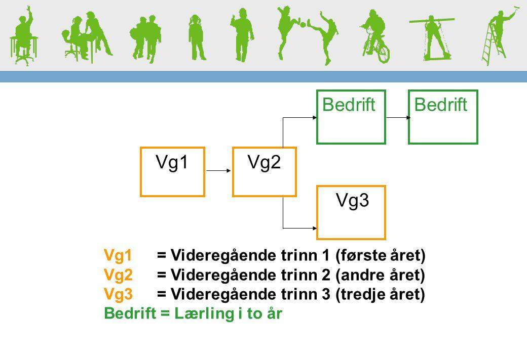 Vg1 Vg2 Bedrift Vg3 Vg1 = Videregående trinn 1 (første året) Vg2 = Videregående trinn 2 (andre året) Vg3 = Videregående trinn 3 (tredje året) Bedrift = Lærling i to år