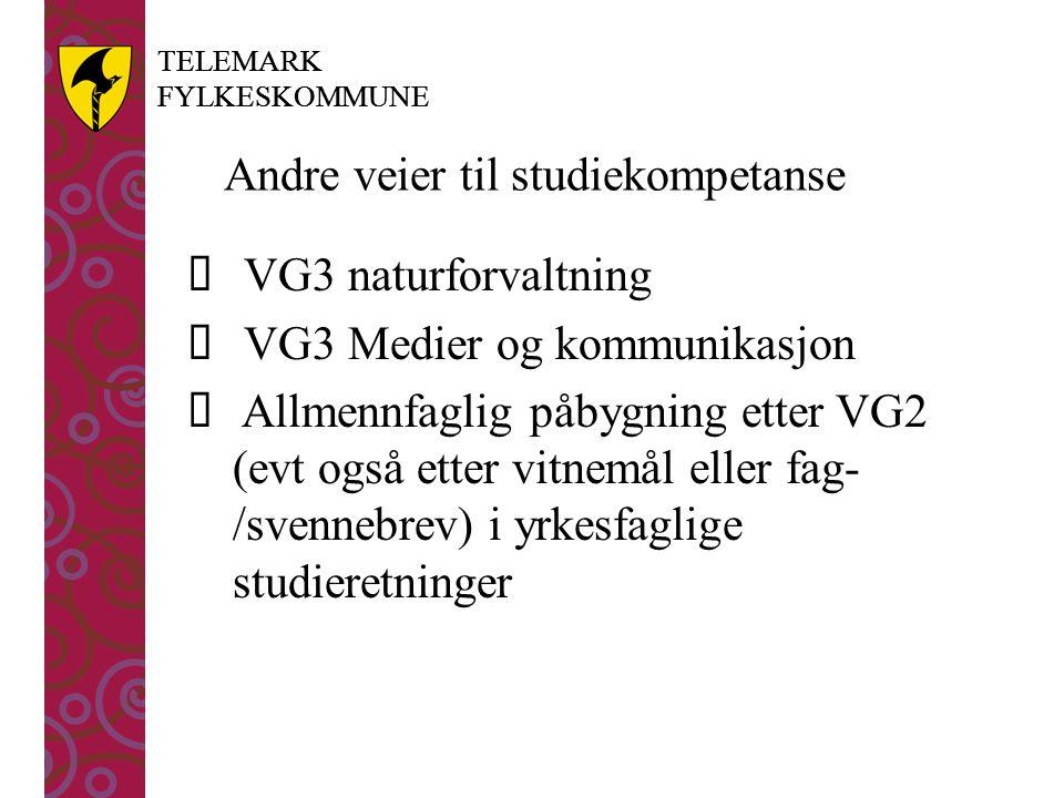 TELEMARK FYLKESKOMMUNE TELEMARK FYLKESKOMMUNE Andre veier til studiekompetanse  VG3 naturforvaltning  VG3 Medier og kommunikasjon  Allmennfaglig påbygning etter VG2 (evt også etter vitnemål eller fag- /svennebrev) i yrkesfaglige studieretninger