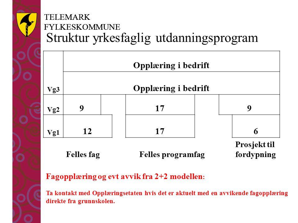 TELEMARK FYLKESKOMMUNE TELEMARK FYLKESKOMMUNE Vg3 Opplæring i bedrift Vg2 9179 Vg1 12176 Felles fagFelles programfag Prosjekt til fordypning Struktur yrkesfaglig utdanningsprogram Fagopplæring og evt avvik fra 2+2 modellen : Ta kontakt med Opplæringsetaten hvis det er aktuelt med en avvikende fagopplæring direkte fra grunnskolen.