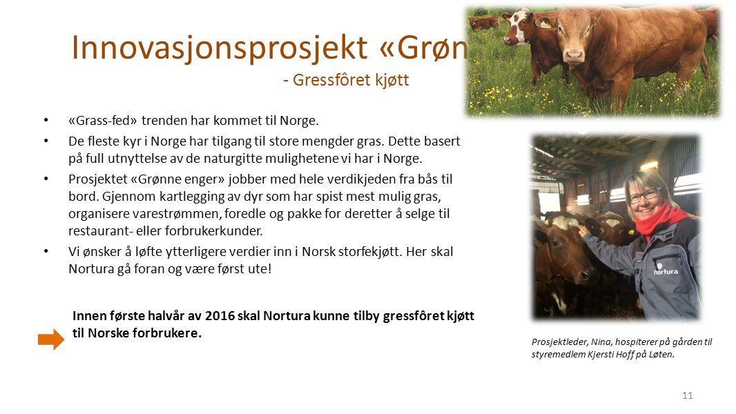 Innovasjonsprosjekt «Grønne Enger» - Gressfôret kjøtt «Grass-fed» trenden har kommet til Norge.