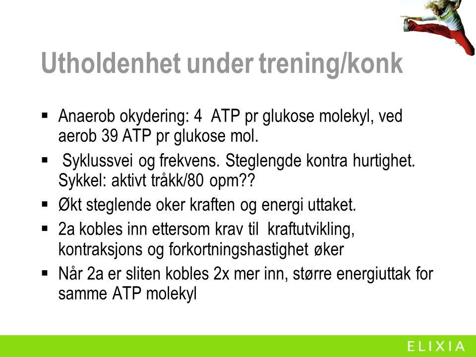 Utholdenhet under trening/konk  Anaerob okydering: 4 ATP pr glukose molekyl, ved aerob 39 ATP pr glukose mol.