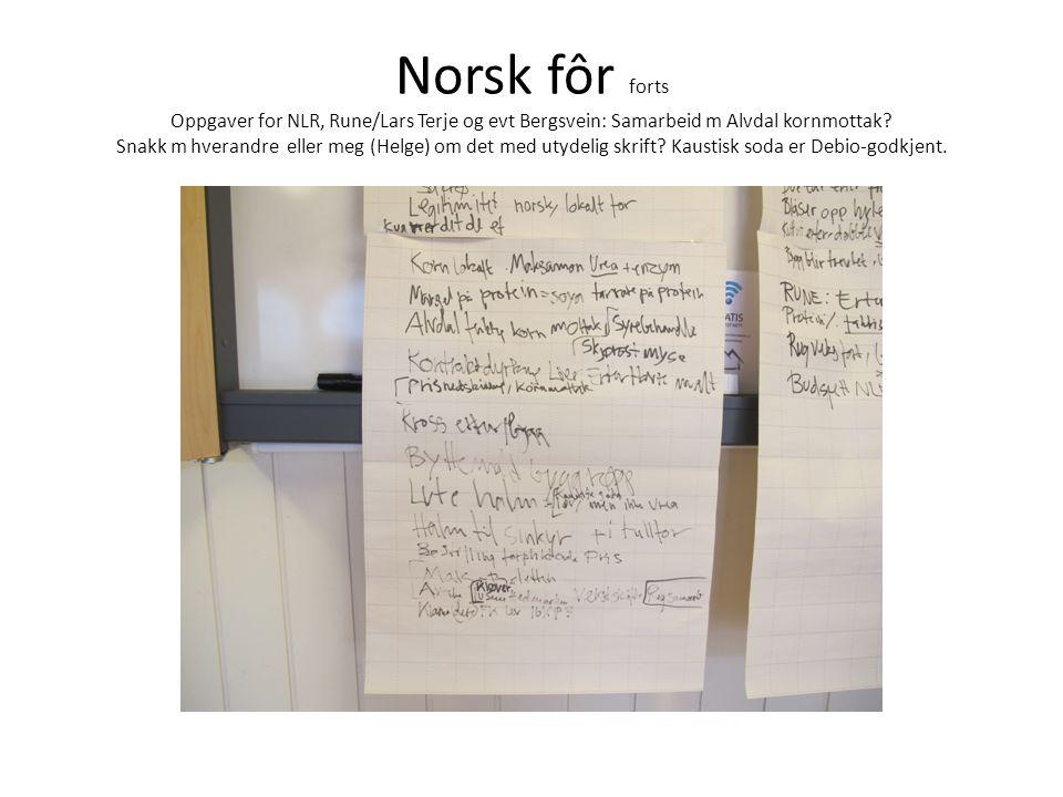 Norsk fôr forts Oppgaver for NLR, Rune/Lars Terje og evt Bergsvein: Samarbeid m Alvdal kornmottak.