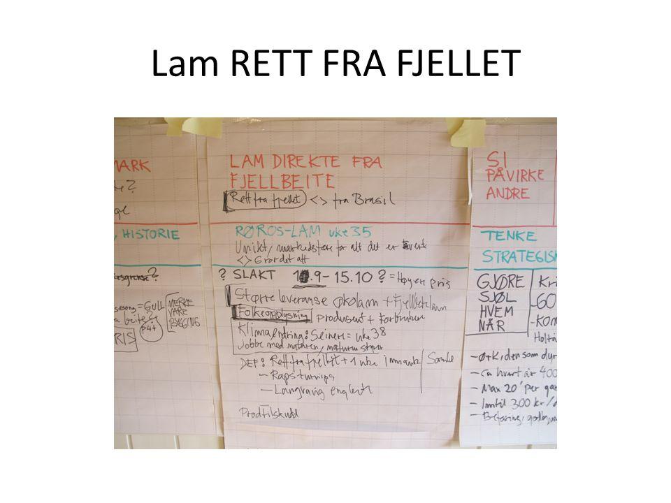 Lam RETT FRA FJELLET