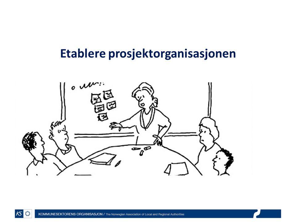 Etablere prosjektorganisasjonen