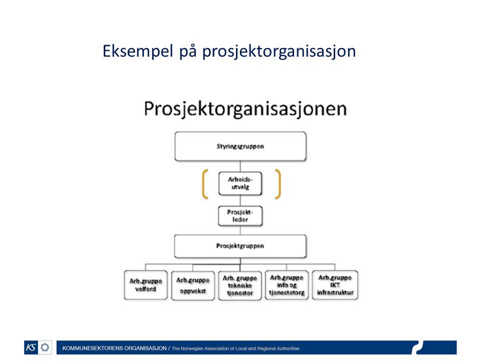 Eksempel på prosjektorganisasjon