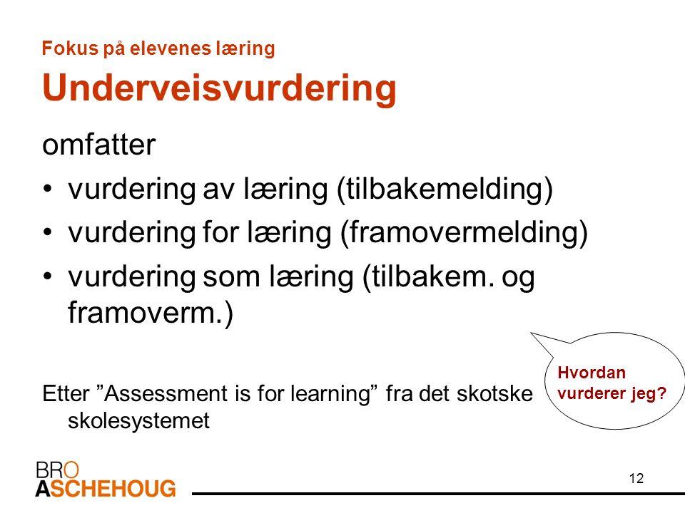 12 Fokus på elevenes læring Underveisvurdering omfatter vurdering av læring (tilbakemelding) vurdering for læring (framovermelding) vurdering som læring (tilbakem.