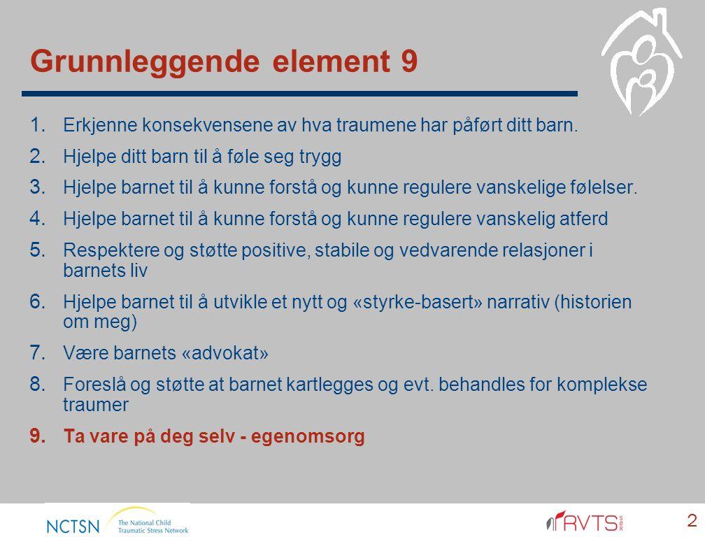 Grunnleggende element 9 2 1. Erkjenne konsekvensene av hva traumene har påført ditt barn. 2. Hjelpe ditt barn til å føle seg trygg 3. Hjelpe barnet ti