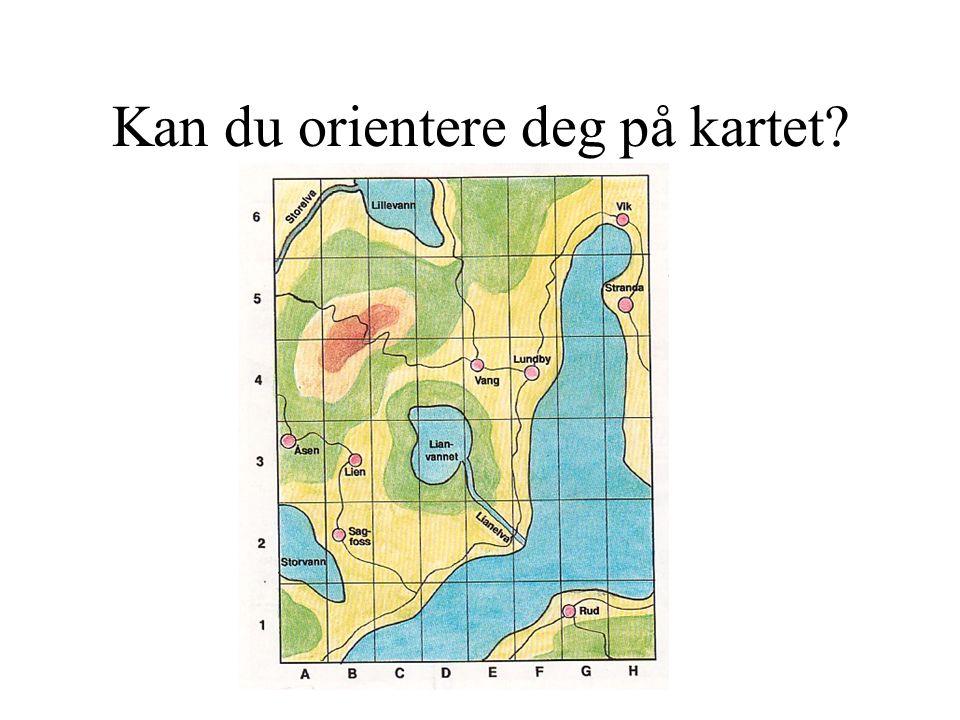 Kan du orientere deg på kartet? Finn: E4, G1, A2, H6, B3, C6, F4, B2, E2, A6, H5, D3, A3