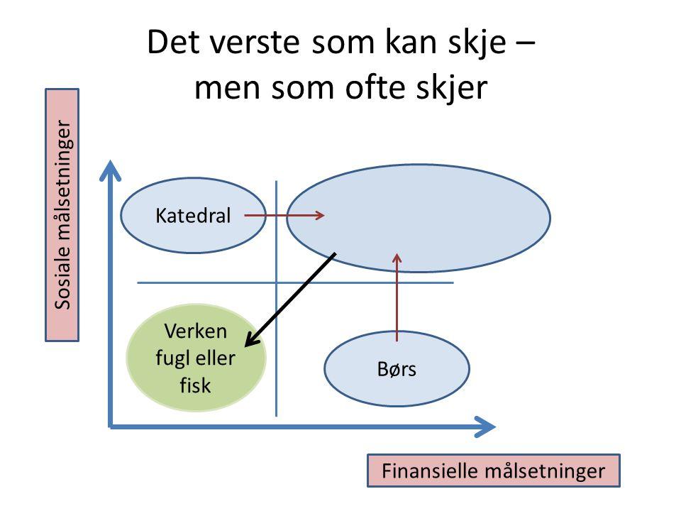 Det verste som kan skje – men som ofte skjer Børs Katedral Finansielle målsetninger Sosiale målsetninger Verken fugl eller fisk