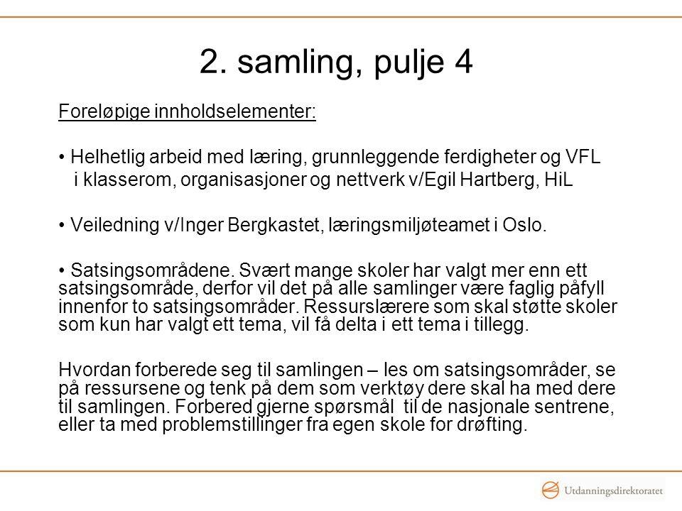 Foreløpige innholdselementer: Helhetlig arbeid med læring, grunnleggende ferdigheter og VFL i klasserom, organisasjoner og nettverk v/Egil Hartberg, HiL Veiledning v/Inger Bergkastet, læringsmiljøteamet i Oslo.