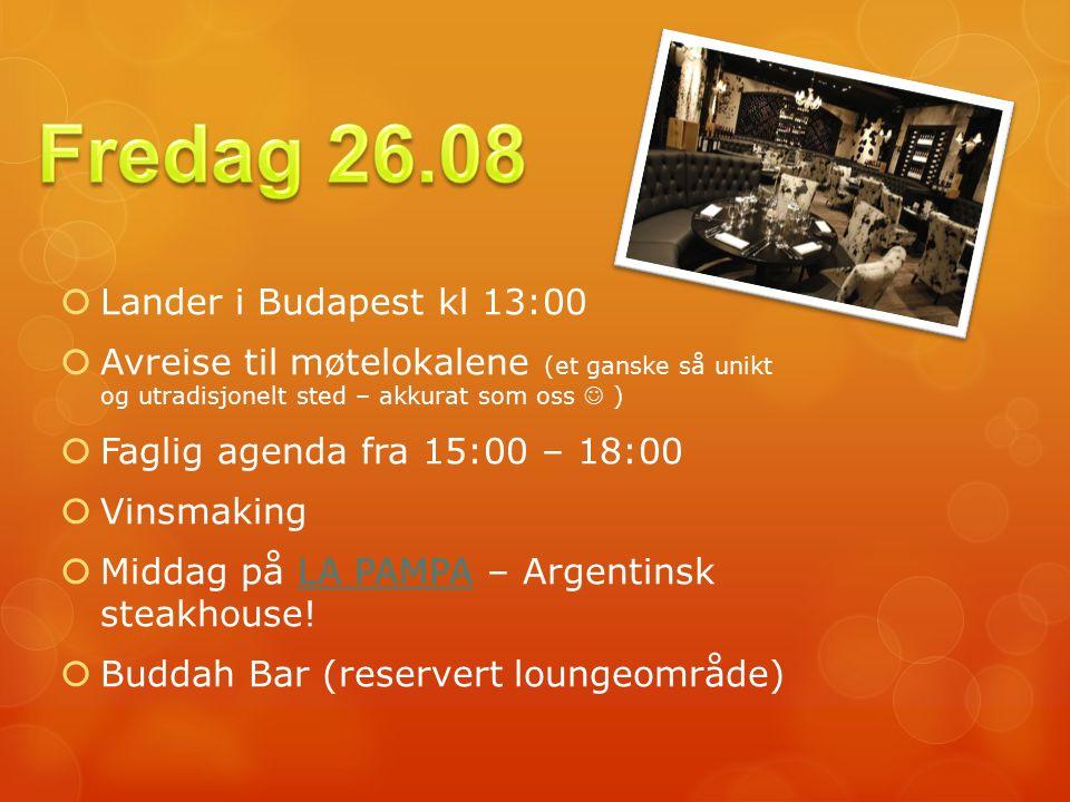  Lander i Budapest kl 13:00  Avreise til møtelokalene (et ganske så unikt og utradisjonelt sted – akkurat som oss )  Faglig agenda fra 15:00 – 18:00  Vinsmaking  Middag på LA PAMPA – Argentinsk steakhouse!LA PAMPA  Buddah Bar (reservert loungeområde)