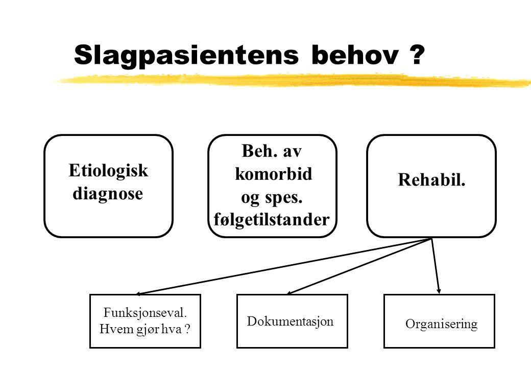 Slagpasientens behov ? Etiologisk diagnose Beh. av komorbid og spes. følgetilstander Rehabil. Funksjonseval. Hvem gjør hva ? Dokumentasjon Organiserin