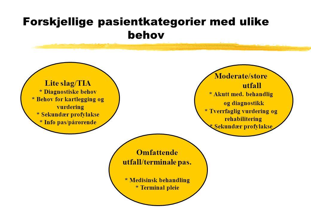 Forskjellige pasientkategorier med ulike behov Lite slag/TIA * Diagnostiske behov * Behov for kartlegging og vurdering * Sekundær profylakse * Info pas/pårørende Moderate/store utfall * Akutt med.
