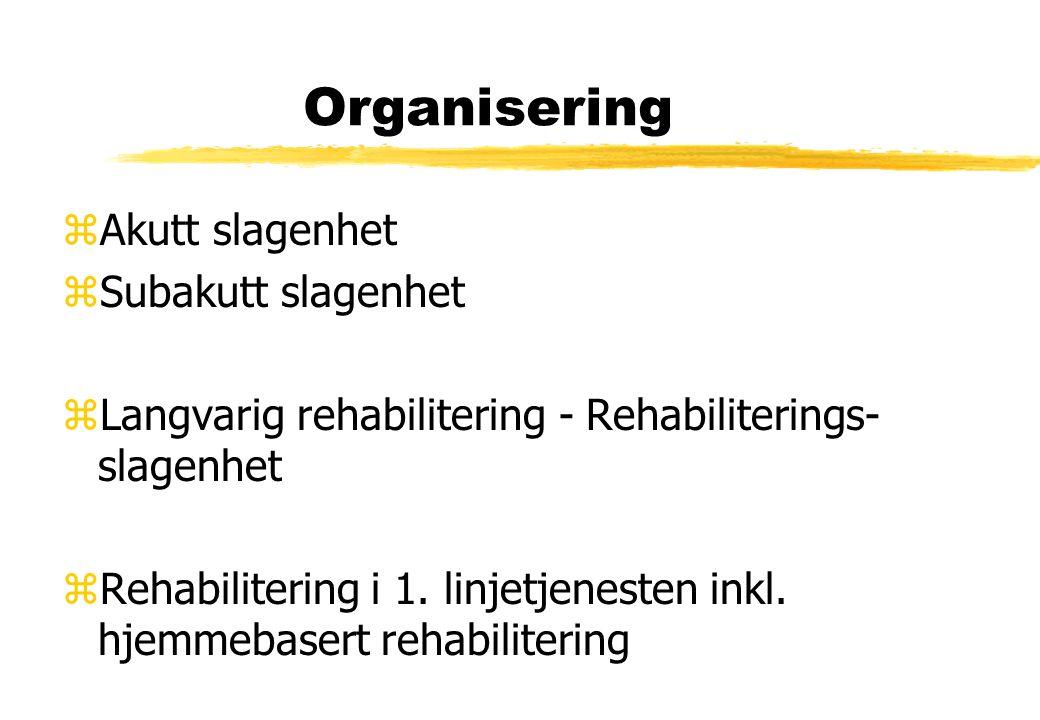 Organisering zAkutt slagenhet zSubakutt slagenhet zLangvarig rehabilitering - Rehabiliterings- slagenhet zRehabilitering i 1. linjetjenesten inkl. hje