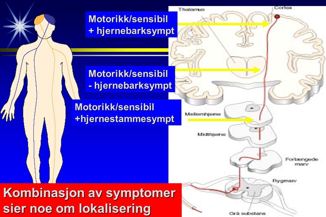 Motorikk/sensibil + hjernebarksympt Motorikk/sensibil - hjernebarksympt Motorikk/sensibil+hjernestammesympt Kombinasjon av symptomer sier noe om lokalisering