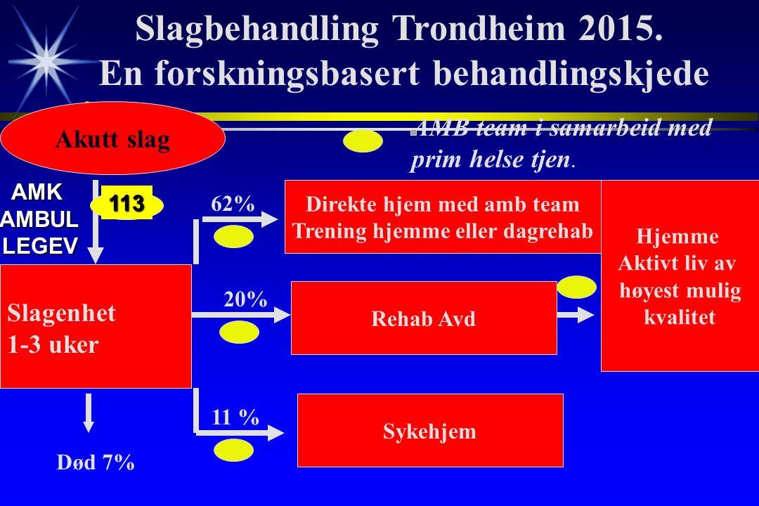 .. Direkte hjem med amb team Trening hjemme eller dagrehab Rehab Avd Sykehjem Hjemme Aktivt liv av høyest mulig kvalitet Død 7% 11 % 20% 62% Slagbehan