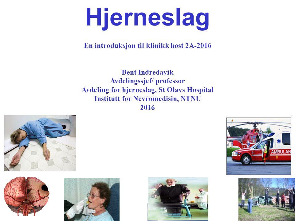 1 Hjerneslag En introduksjon til klinikk høst 2A-2016 Bent Indredavik Avdelingssjef/ professor Avdeling for hjerneslag, St Olavs Hospital Institutt fo