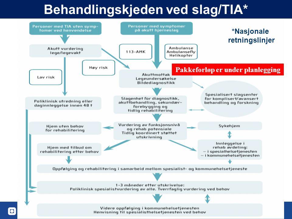 53 Behandlingskjeden ved slag/TIA* *Nasjonale retningslinjer Pakkeforløp er under planlegging