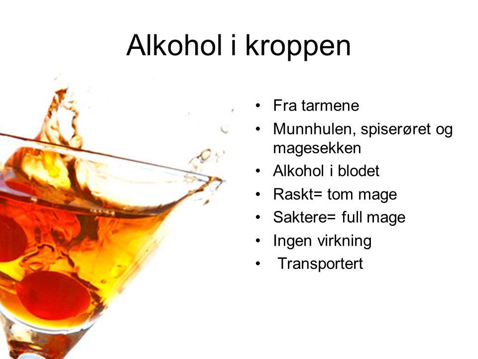 Alkohol i kroppen Fra tarmene Munnhulen, spiserøret og magesekken Alkohol i blodet Raskt= tom mage Saktere= full mage Ingen virkning Transportert