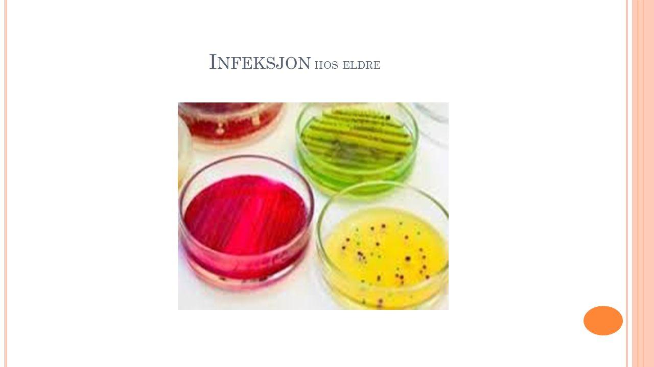 L UNGEBETENNELSE : Luftveisinfeksjoner utvikler seg raskere til bakteriell pneumoni hos eldre.