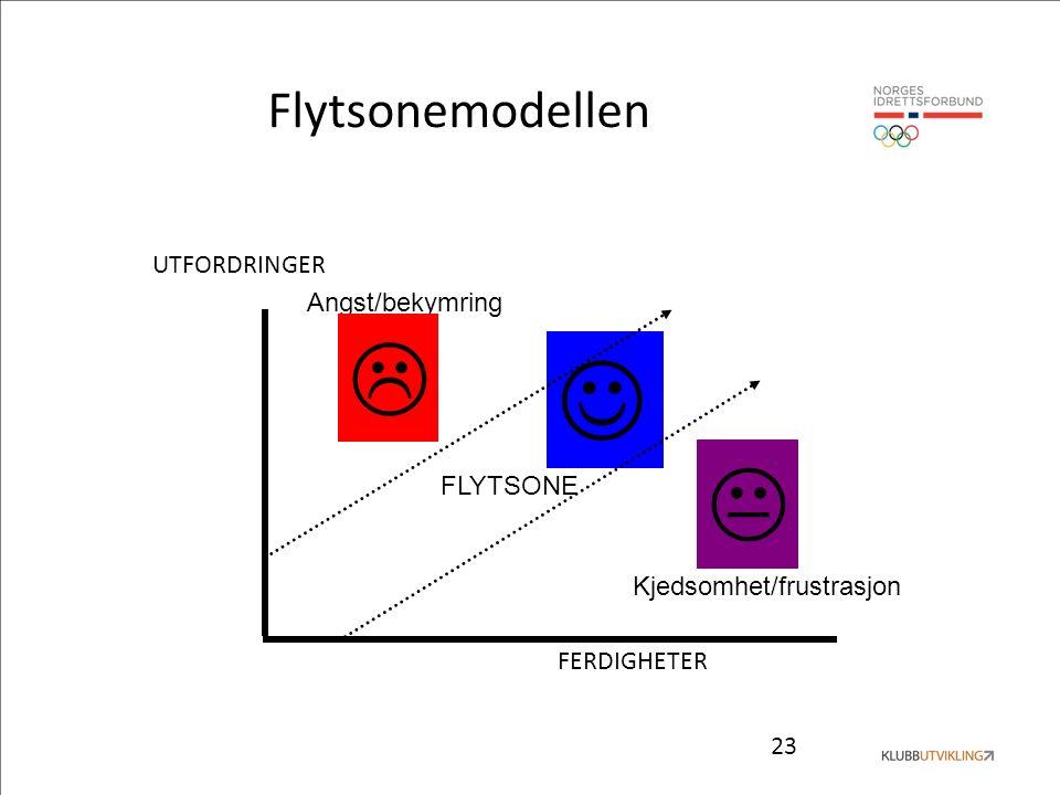 23 UTFORDRINGER Angst/bekymring Kjedsomhet/frustrasjon   FLYTSONE FERDIGHETER Flytsonemodellen