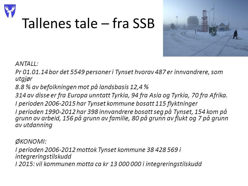 Tallenes tale – fra SSB ANTALL: Pr 01.01.14 bor det 5549 personer i Tynset hvorav 487 er innvandrere, som utgjør 8.8 % av befolkningen mot på landsbasis 12,4 % 314 av disse er fra Europa unntatt Tyrkia, 94 fra Asia og Tyrkia, 70 fra Afrika.