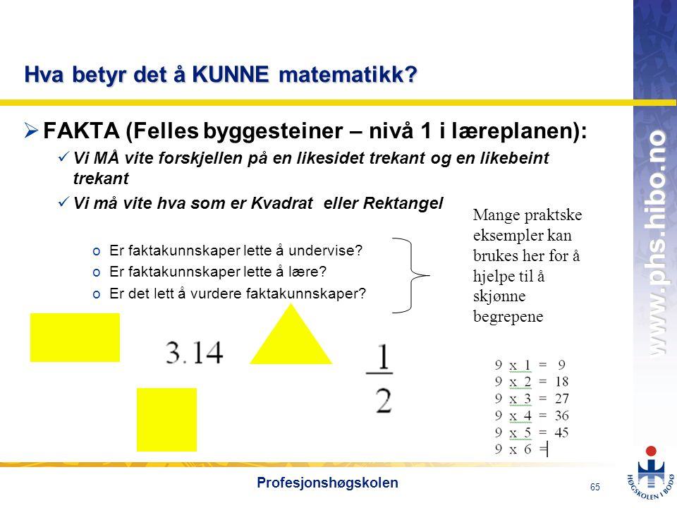 OMJ-98 www.phs.hibo.no 65 Profesjonshøgskolen Hva betyr det å KUNNE matematikk?  FAKTA (Felles byggesteiner – nivå 1 i læreplanen): Vi MÅ vite forskj
