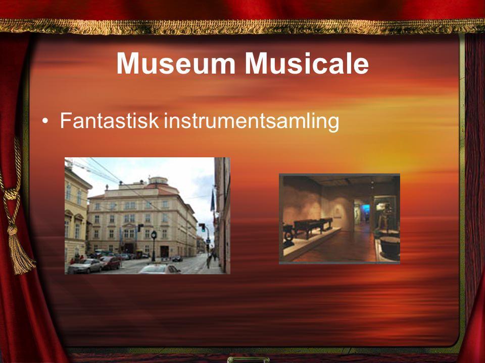 Museum Musicale Fantastisk instrumentsamling