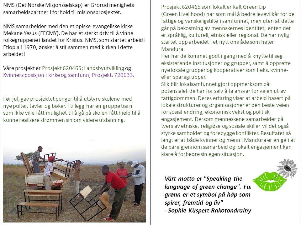 NMS (Det Norske Misjonsselskap) er Grorud menighets samarbeidspartner i forhold til misjonsprosjektet. NMS samarbeider med den etiopiske evangeliske k
