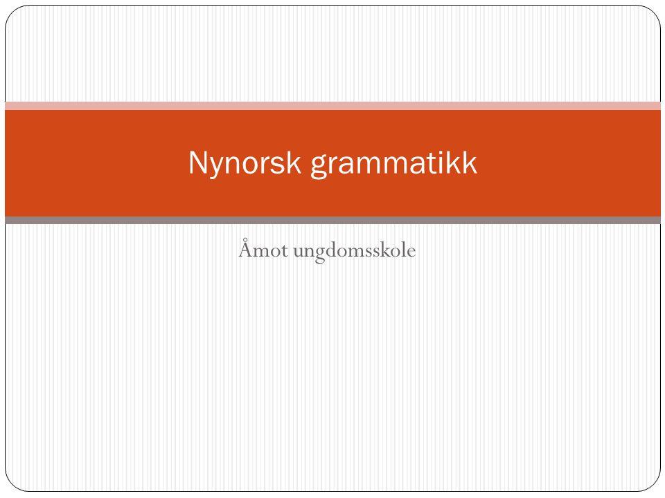 Åmot ungdomsskole Nynorsk grammatikk