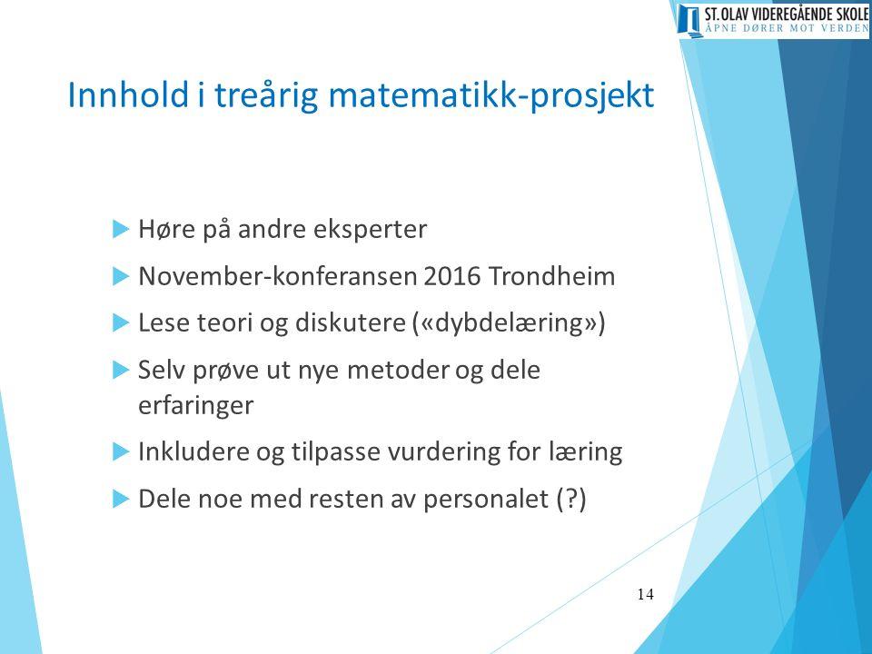Innhold i treårig matematikk-prosjekt  Høre på andre eksperter  November-konferansen 2016 Trondheim  Lese teori og diskutere («dybdelæring»)  Selv prøve ut nye metoder og dele erfaringer  Inkludere og tilpasse vurdering for læring  Dele noe med resten av personalet ( ) 14