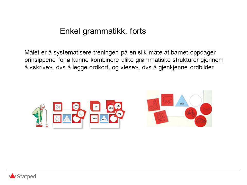 Målet er å systematisere treningen på en slik måte at barnet oppdager prinsippene for å kunne kombinere ulike grammatiske strukturer gjennom å «skrive», dvs å legge ordkort, og «lese», dvs å gjenkjenne ordbilder Enkel grammatikk, forts