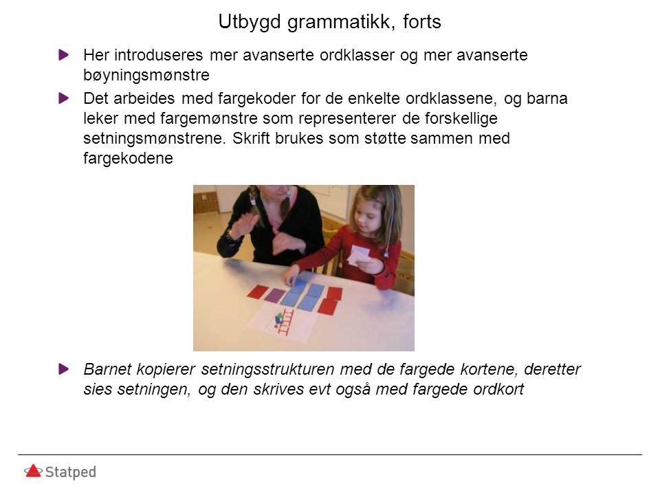 Utbygd grammatikk, forts Her introduseres mer avanserte ordklasser og mer avanserte bøyningsmønstre Det arbeides med fargekoder for de enkelte ordklassene, og barna leker med fargemønstre som representerer de forskellige setningsmønstrene.