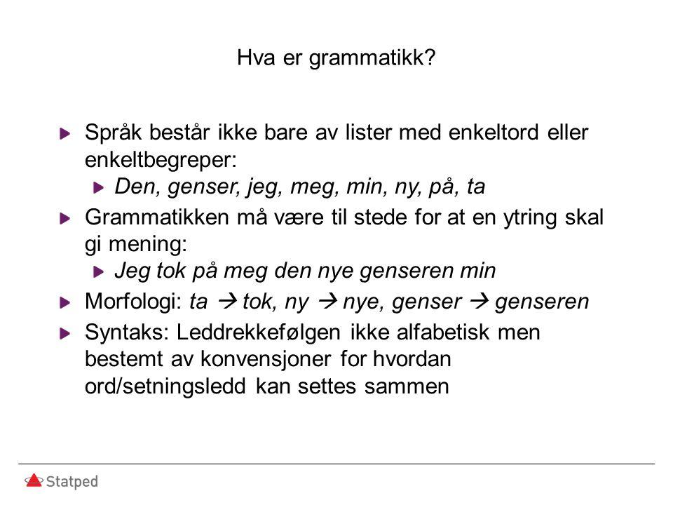 Hva er grammatikk? Språk består ikke bare av lister med enkeltord eller enkeltbegreper: Den, genser, jeg, meg, min, ny, på, ta Grammatikken må være ti