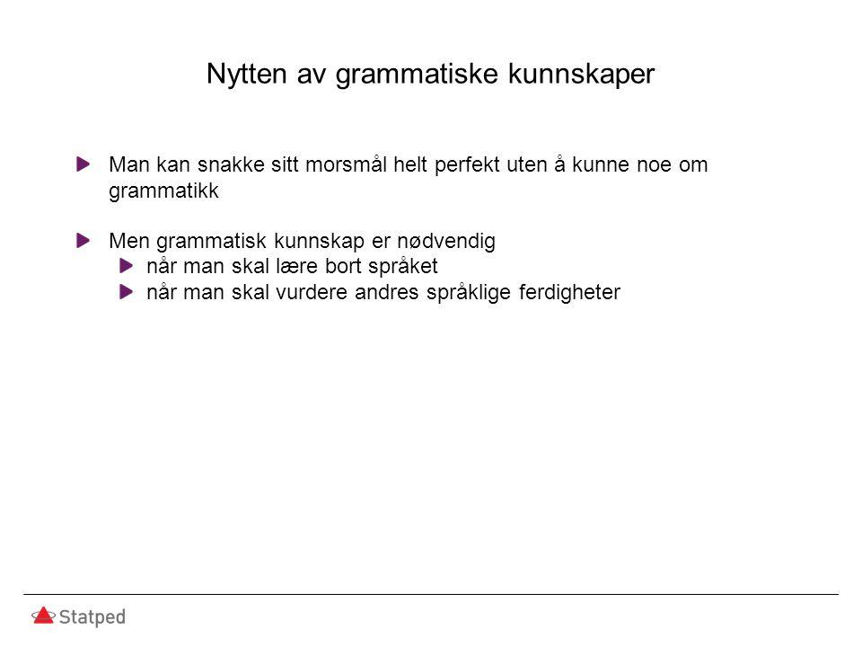 Nytten av grammatiske kunnskaper Man kan snakke sitt morsmål helt perfekt uten å kunne noe om grammatikk Men grammatisk kunnskap er nødvendig når man