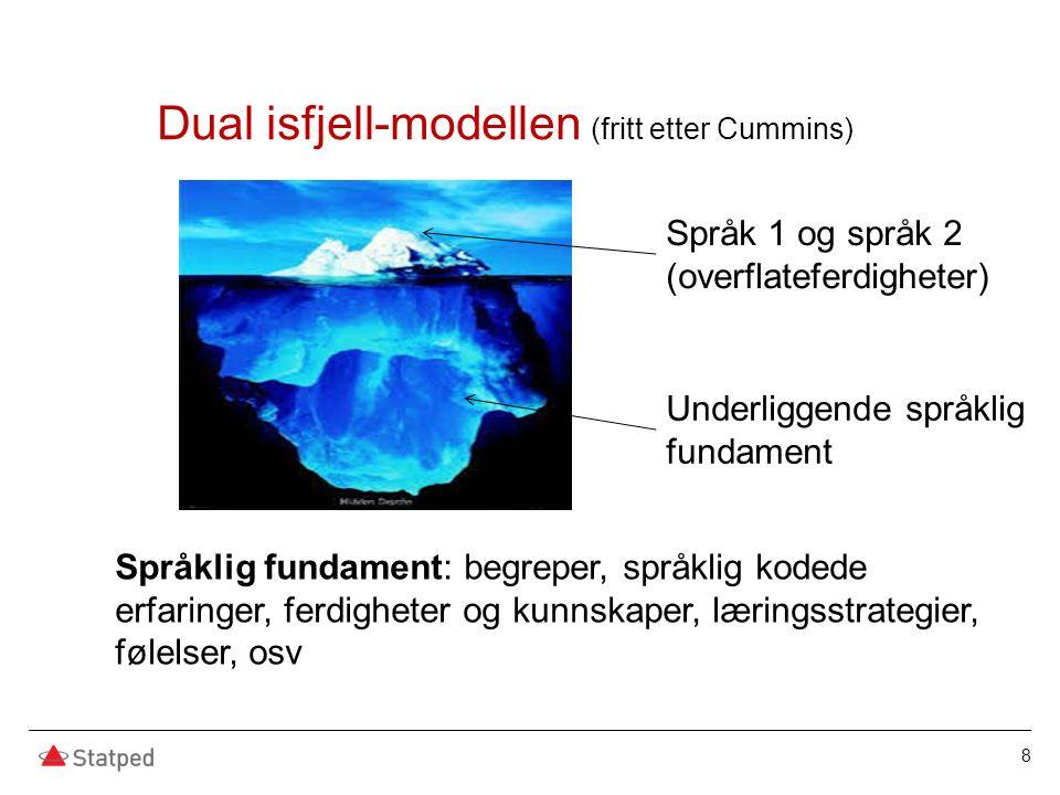 8 Dual isfjell-modellen (fritt etter Cummins) Språk 1 og språk 2 (overflateferdigheter) Underliggende språklig fundament Språklig fundament: begreper,