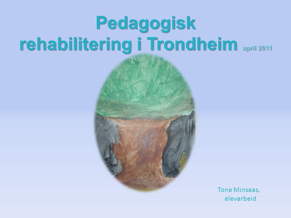 Pedagogisk rehabilitering i Trondheim april 2011 Tone Minsaas, elevarbeid