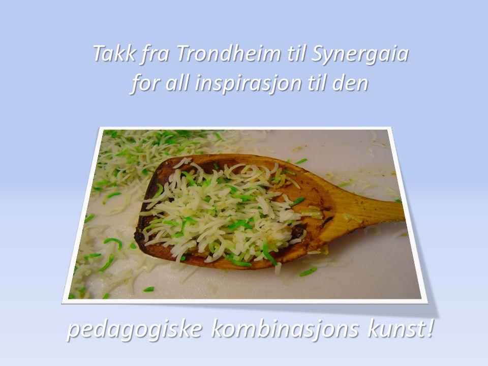 Takk fra Trondheim til Synergaia for all inspirasjon til den pedagogiske kombinasjons kunst!