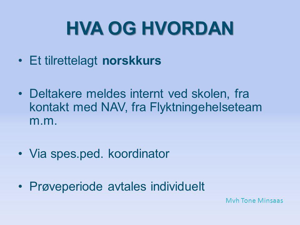 HVA OG HVORDAN Et tilrettelagt norskkurs Deltakere meldes internt ved skolen, fra kontakt med NAV, fra Flyktningehelseteam m.m.