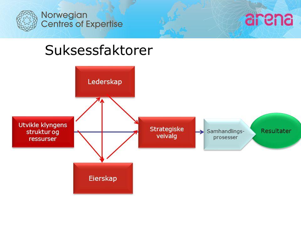 Resultater Suksessfaktorer Utvikle klyngens struktur og ressurser Samhandlings- prosesser Samhandlings- prosesser Eierskap Lederskap Strategiske veivalg Strategiske veivalg