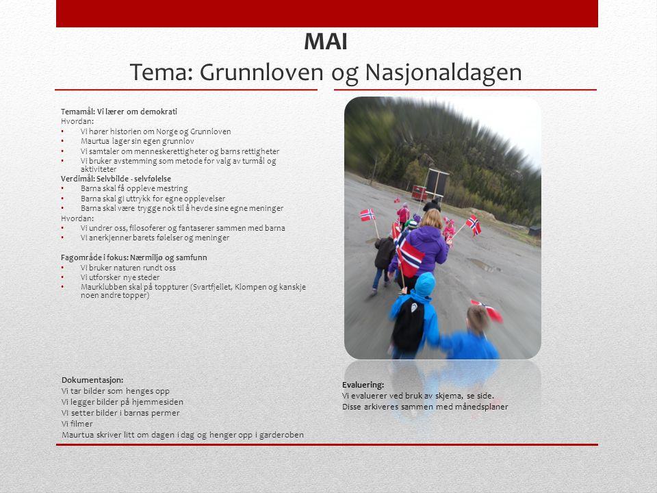 Dokumentasjon: Vi tar bilder som henges opp Vi legger bilder på hjemmesiden VI setter bilder i barnas permer Vi filmer Maurtua skriver litt om dagen i