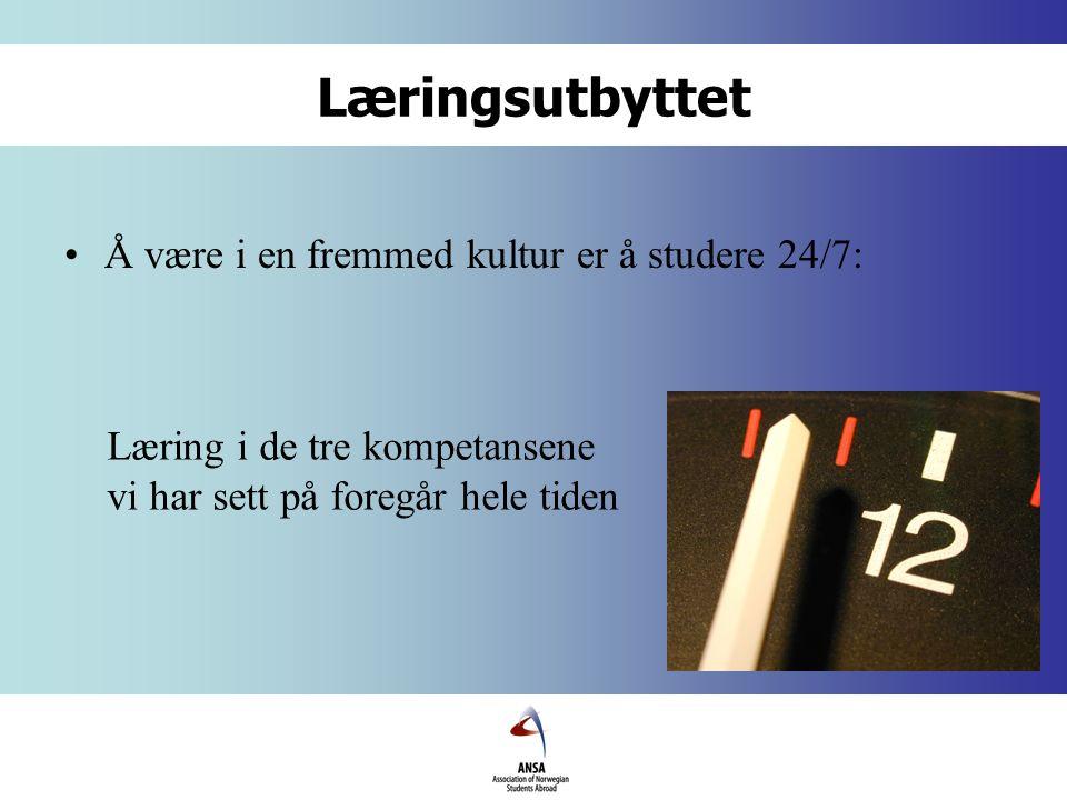 Læringsutbyttet Å være i en fremmed kultur er å studere 24/7: Læring i de tre kompetansene vi har sett på foregår hele tiden