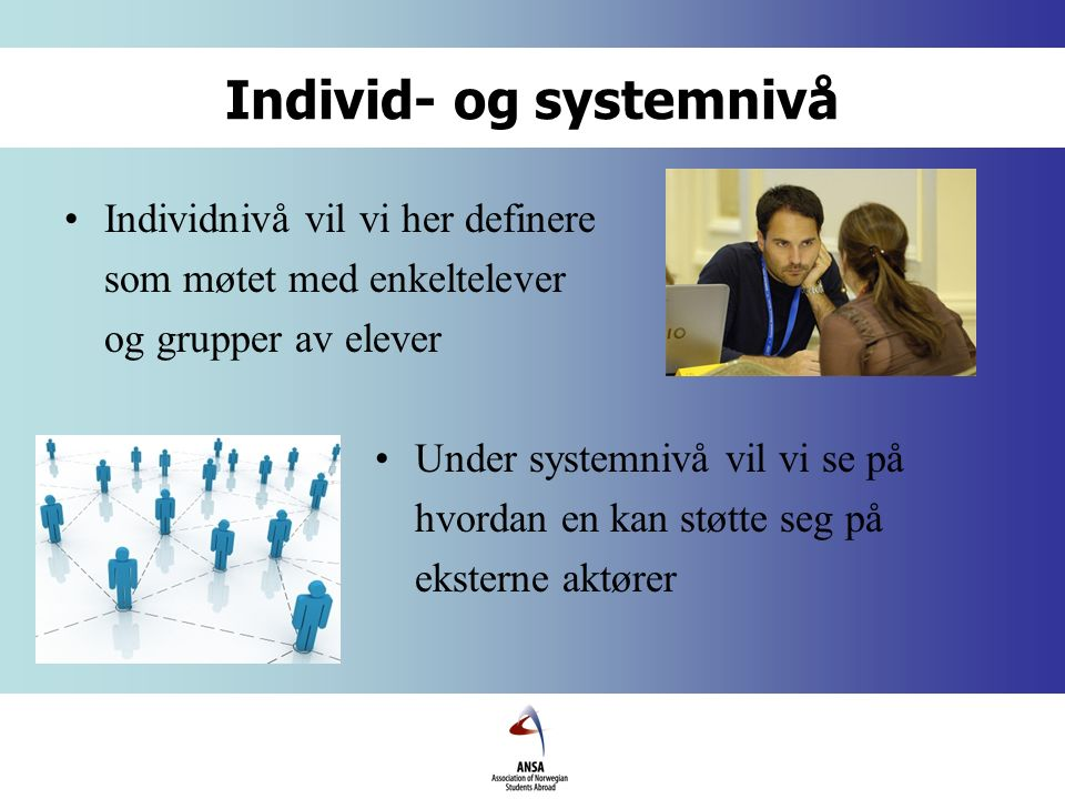 Individ- og systemnivå Individnivå vil vi her definere som møtet med enkeltelever og grupper av elever Under systemnivå vil vi se på hvordan en kan støtte seg på eksterne aktører