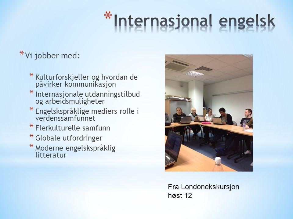 * Vi jobber med: * Kulturforskjeller og hvordan de påvirker kommunikasjon * Internasjonale utdanningstilbud og arbeidsmuligheter * Engelskspråklige me