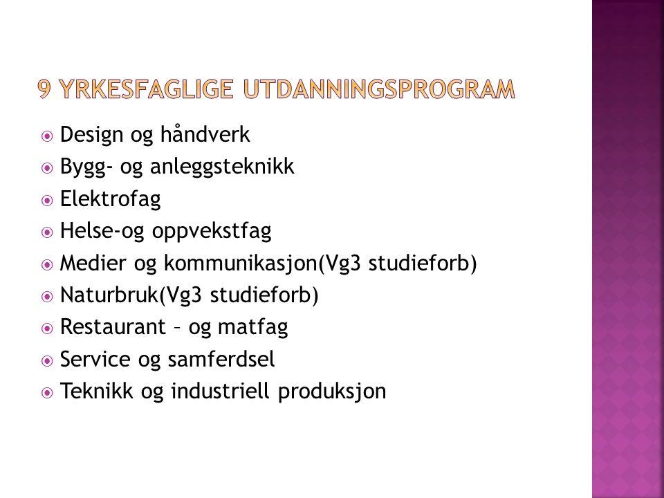  Design og håndverk  Bygg- og anleggsteknikk  Elektrofag  Helse-og oppvekstfag  Medier og kommunikasjon(Vg3 studieforb)  Naturbruk(Vg3 studiefor