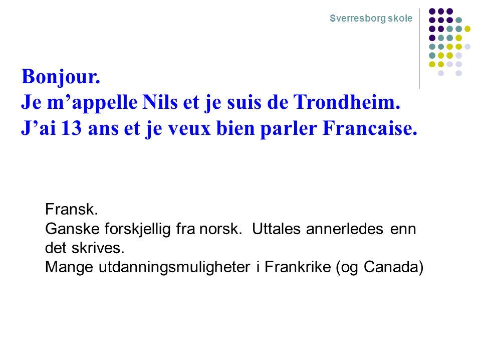 Bonjour. Je m'appelle Nils et je suis de Trondheim.