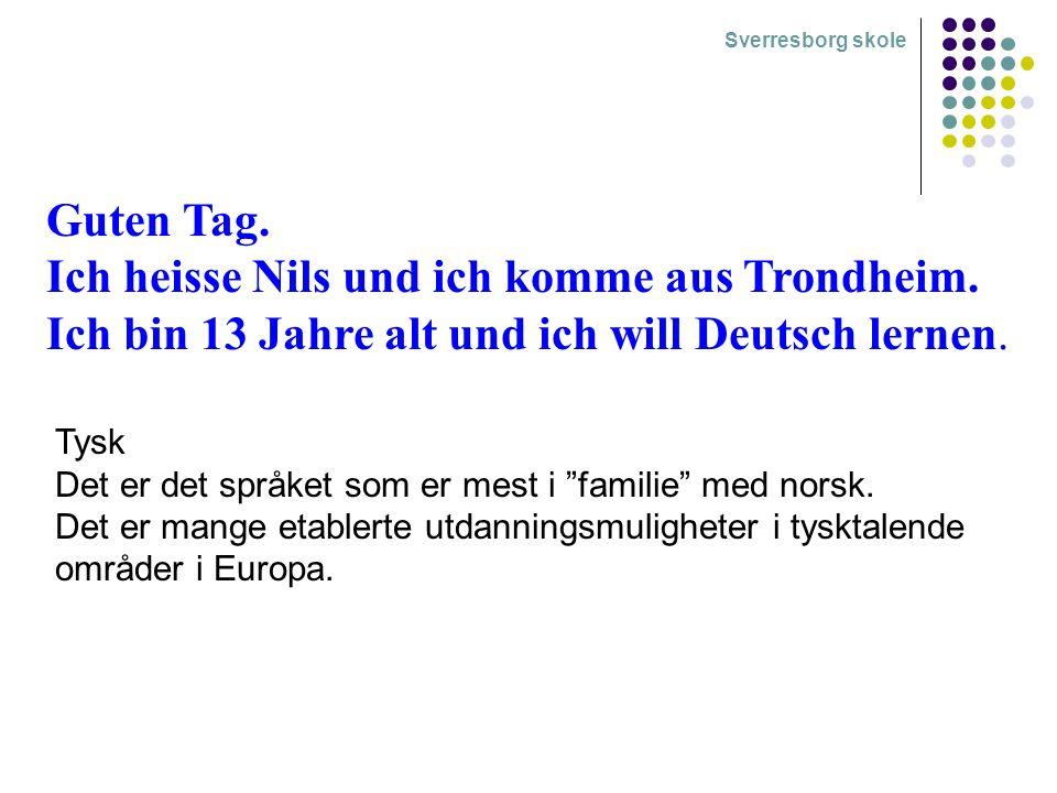 Guten Tag. Ich heisse Nils und ich komme aus Trondheim.