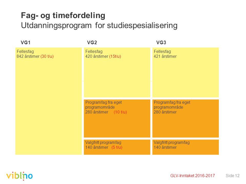 Fag- og timefordeling Utdanningsprogram for studiespesialisering VG1 VG2 VG3 Side 12 Fellesfag 842 årstimer (30 t/u) Fellesfag 420 årstimer (15t/u) Fe