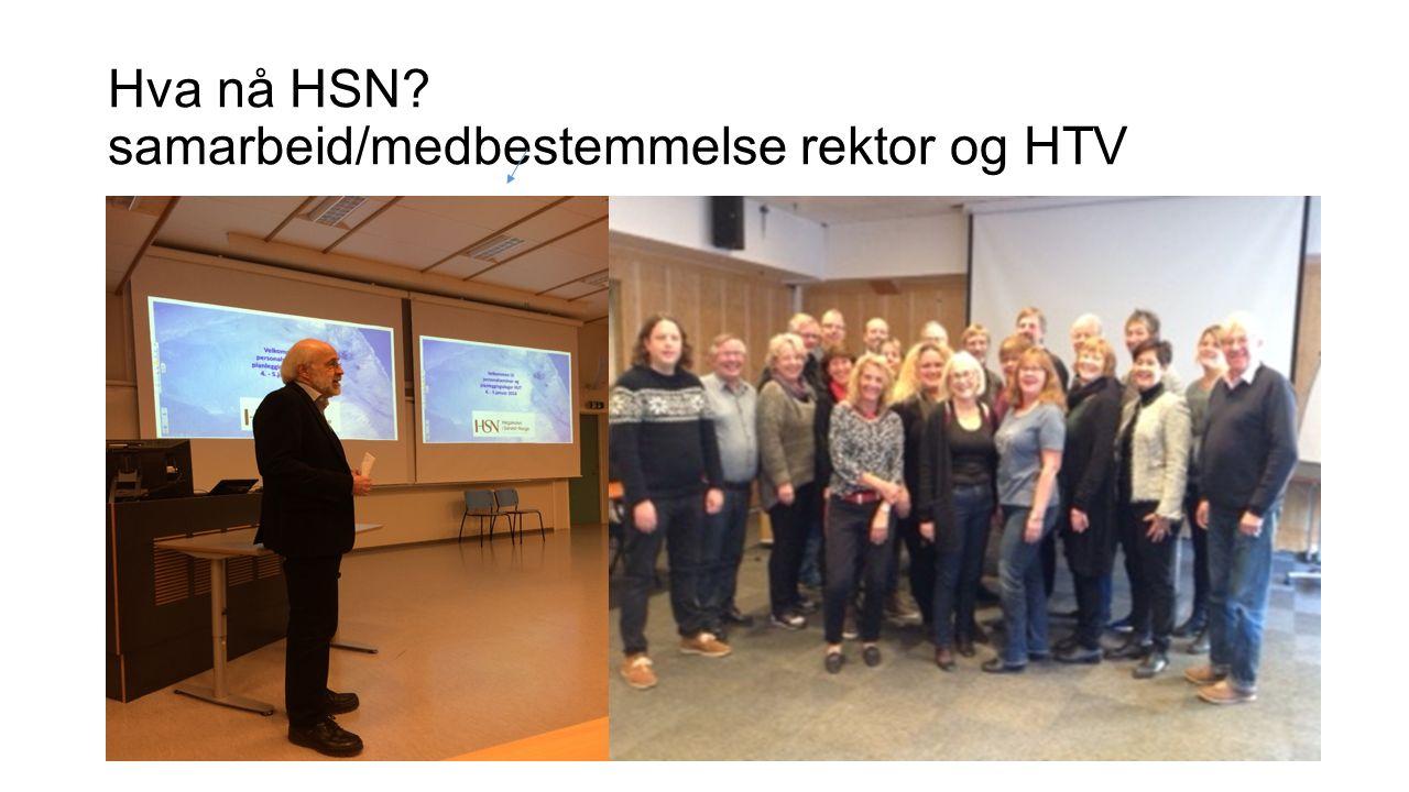 Hva nå HSN samarbeid/medbestemmelse rektor og HTV